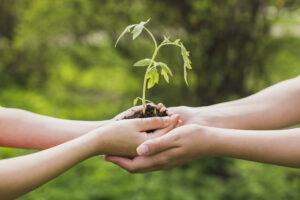 Cinco dicas para investir em sustentabilidade na construção civil